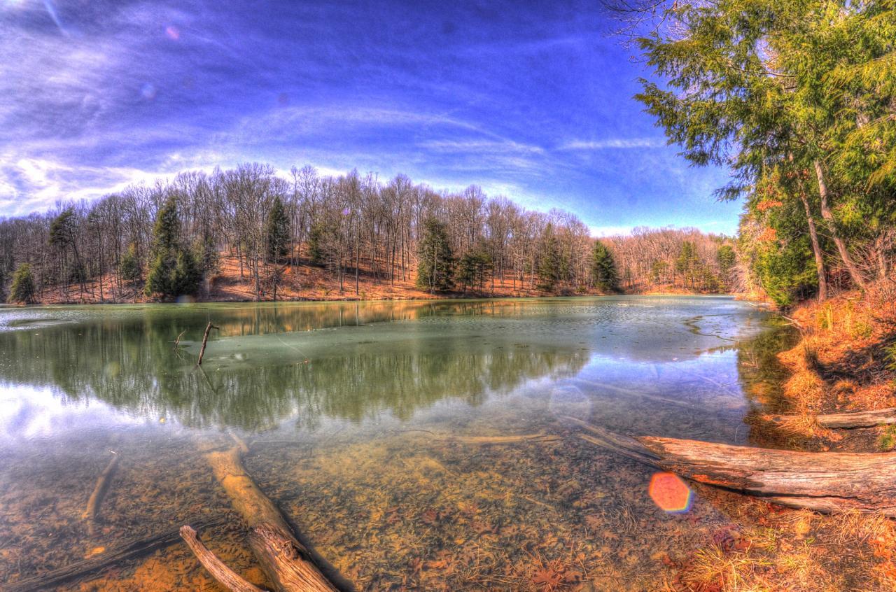 Modified Soul Photography - Rose Lake
